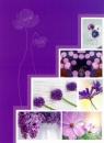 Minialbum 9x13 pro 36 fotek Pastel Vase  fialový
