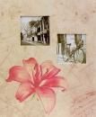 SAMOLEPIACE album 60 strán Vellum 1 lilie