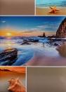 Fotoalbum 10x15 pro 200 fotografií Starfish hnědý