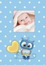 Fotoalbum 10x15 pro 300 fotografií Owls modré