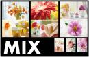 Mini album 10x15 pro 36 fotek Welfare MIX