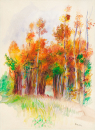 Háj stromů 30x40 Pierre-Auguste Renoir.