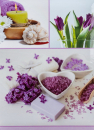 Fotoalbum 10x15 pro 300 fotografií Aloe fialové