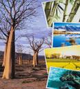 Fotoalbum 10x15 pre 500 fotiek Baobab 1