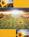 Album 10x15 pre 304 fotiek  Vista 2 žltý