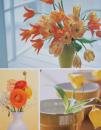 Fotoalbum 10x15 pre 200 fotiek Welfare 1 oranžový