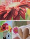 Fotoalbum 10x15 pre 200 fotiek Welfare 1 červený