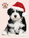 Mini album pre 100 fotiek 10x15 Plush 3 pes s čepicí