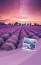 Fotoalbum 10x15 pro 300 fotografií  3UP Vision fialové