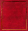 SAMOLEPÍCÍ album 100 stran -DRS50-vinyl vínový