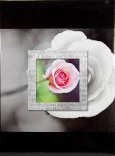 SAMOLEPIACE album 40 strán - Frame 1