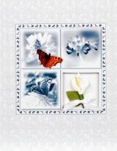 Album 13x18 pre 48 fotek Weding Butterfly