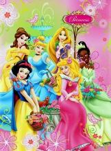 Samolepiace album 20 stráň - Disney - Pricezny