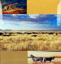 Klasické fotoalbum 60 strán DISCOVERY žirafa