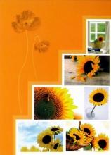 Minialbum 9x13 pre 36 fotiek   Pastel Vase oranžový