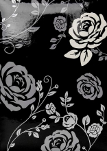 Fotoalbum 10x15 pro 300 fotografií Rose black