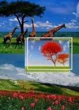 Fotoalbum 10x15 pre 200 fotiek Select 3
