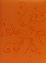 Fotoalbum 10x15 pro 300 fotografií UV  orange