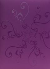 Fotoalbum 10x15 pro 300 fotografií UV purple