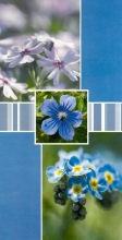 Album 10x15 pre 96 fotiek Stigma modré