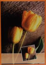 Fotoalbum 10x15 pre 200 fotografií Flower oranžové