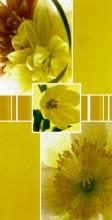 Album 10x15 pre 96 fotiek Stigma žlté