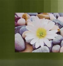 Fotoalbum 10x15 pre 500 fotiek Essence zelené