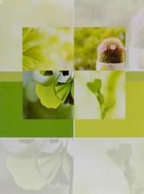 Fotoalbum 10x15 pro 300 fotografií Savor zelené
