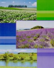 Fotoalbum 10x15 pre 200 fotiek Euphoric modré