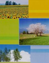 Fotoalbum 10x15 pre 200 fotiek Euphoric žlté