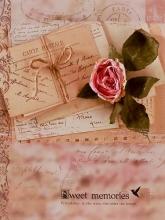 SAMOLEPIACE album 60 strán Time 2 růže