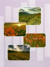 Mini album 10x15 pre 36 fotiek 1-3 rôzne farby