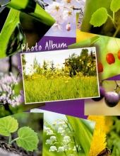 Minialbum 10x15 pre 64 fotiek Collage-mix barev