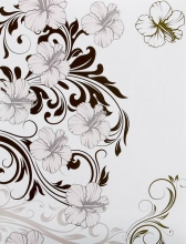 SAMOLEPIACE album 60 strán Opposite 2 kvety