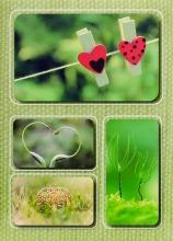 Fotoalbum 10x15 pre 200 fotografií Linen 1 zelený