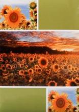 Fotoalbum 10x15 pre 200 fotiek Sunrise zelený
