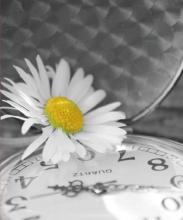 Fotoalbum 9x13 pre 200 fotiek Time šedý