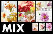 Mini album 10x15 pre 36 fotiek Welfare MIX