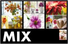 Minialbum 13x18 pro 36 fotek Welfare MIX