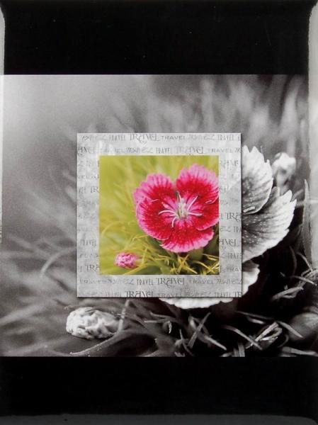 SAMOLEPÍCÍ album 40 stran - Frame 3