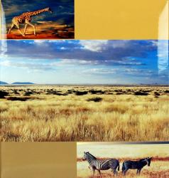 Klasické fotoalbum 60 stran DISCOVERY žirafa