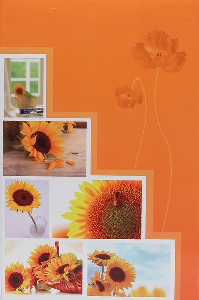Fotoalbum 10x15 pro 300 fotografií Pastel Vase 1