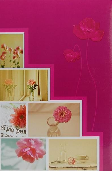 Fotoalbum 10x15 pro 300 fotografií Pastel Vase 3