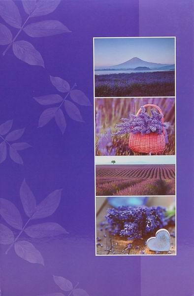 Fotoalbum 10x15 pro 300 fotografií Wayfering fialový