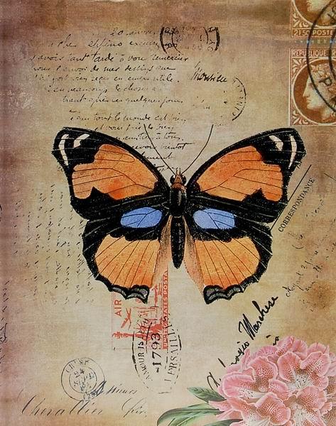 Fotoalbum 10x15 pro 200 fotek Spring Butterflay 2