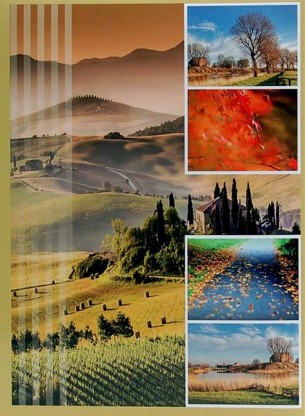 Fotoalbum 10x15 pro 300 fotografií Survay olivový