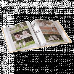 album pre 200 fotek 10x15 svatebn isny modr. Black Bedroom Furniture Sets. Home Design Ideas